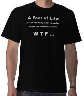 After Monday And Tuesday Even The Calendar Says W T F T-Shirt