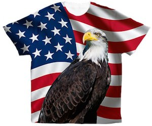 American Flag and Bald Eagle t-shirt